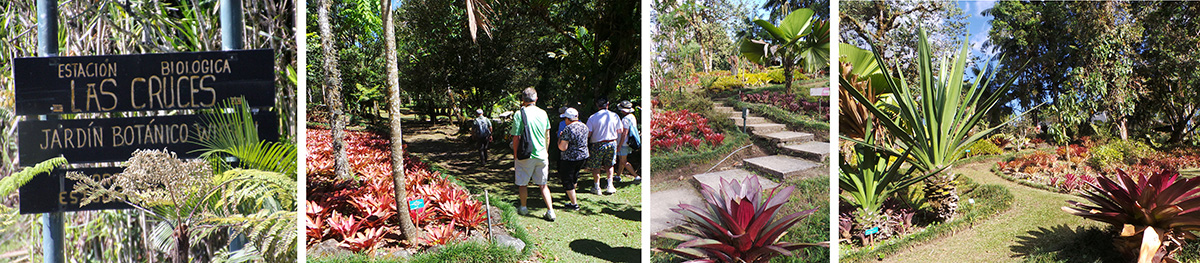 Entrance to Las Cruces Biological Station (L) and scenes from Wilson Botanic Garden.