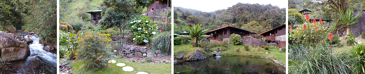 The small river near Trogon Lodge (L) and scenes of the landscaped area at Trogon Lodge (LC-R).