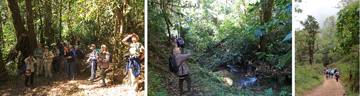 The group on the trail (L), Deb photographs the creek (C), hiking on the road (R).