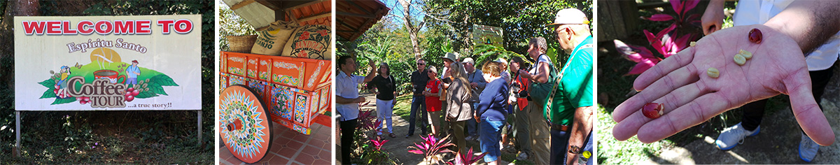 """The entrance to the coffee tour (L), a display of old-time coffee bags and typical wooden oxcart (LC), Ronnie tells the group about coffee fruits (RC) and shows the seeds (""""beans"""" inside the red pulpy fruit (R)."""