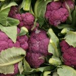 image of cauliflower