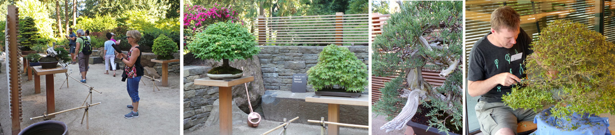 Bonsai Terrace and other scenes from Portland Gardens