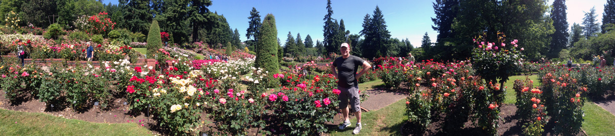 mike maddox in the portland rose garden - Portland Rose Garden