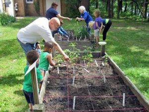 image of people gardening