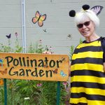 Chippewa Pollinator Education