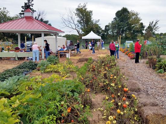 Dane Count Urban Gardening