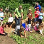 Peirce kids weeding