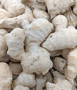 Ginger, Zingiber officinale – Grasp Gardener Program