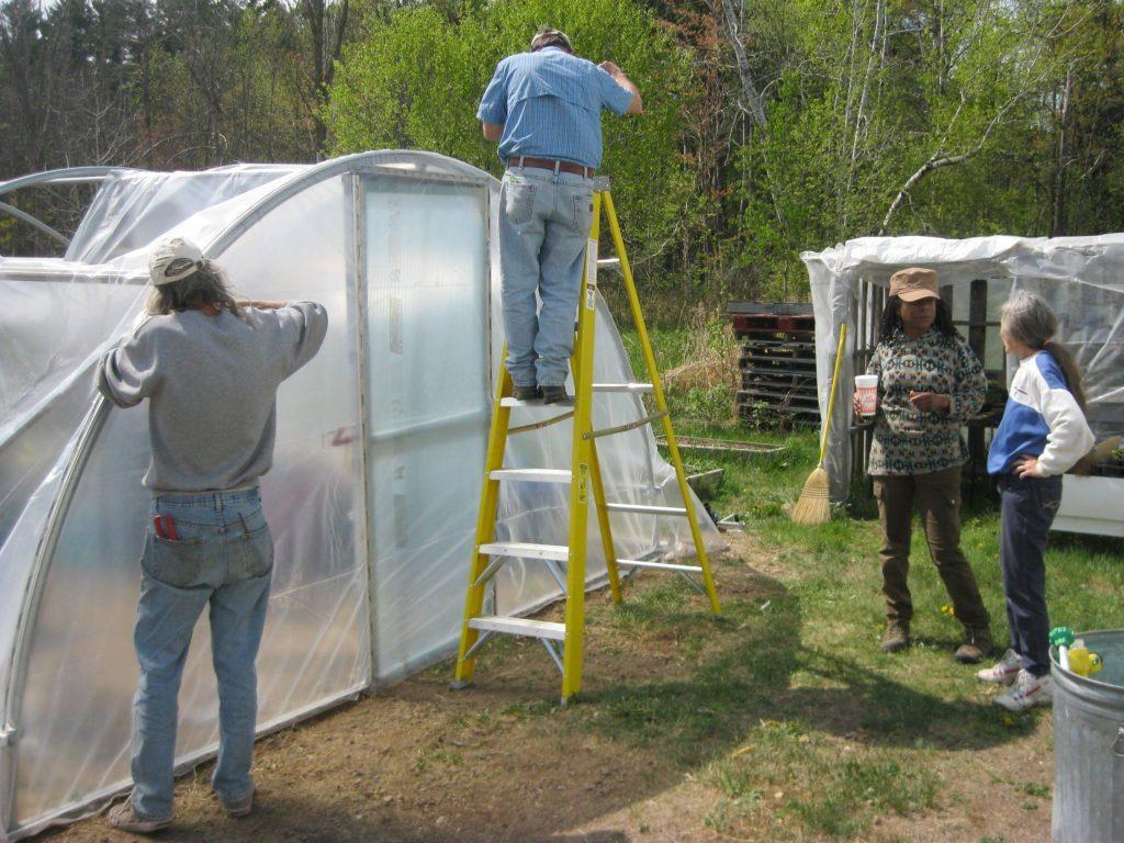 volunteers building greenhouse