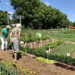 women exploring garden