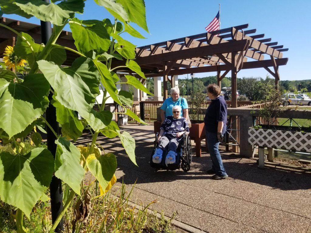 exploring the garden in a wheelchair