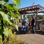 exploring the garden in a wheelchair
