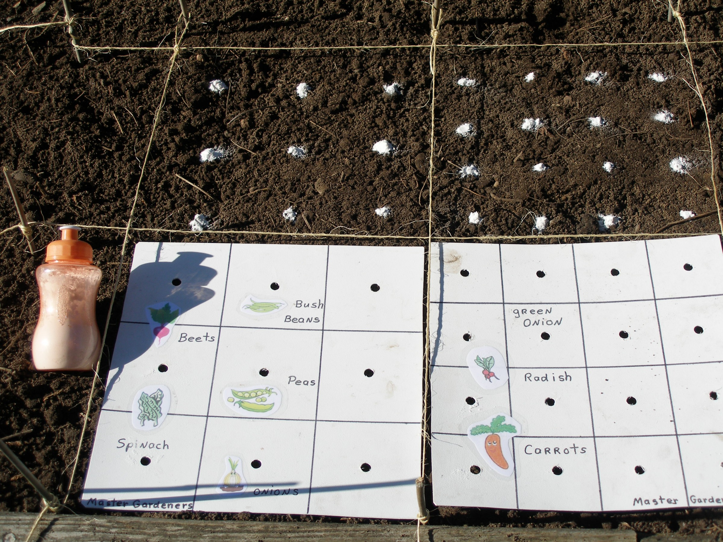 Square Foot Gardening planting design