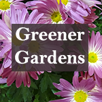 Greener Gardens Plants Plus